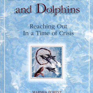 Dreamcatchers and Dolphins- cover image